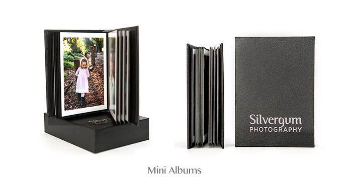 mini-albums